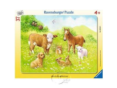 【Ravensburger-兒童紙板拼圖-37片】牧場動物們In the Pasture