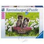 【Ravensburger拼圖-1000片】貓咪的草原野餐Picnic in the Meadow