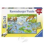 【Ravensburger拼圖-2x24片】池塘生態Marine & Land Animals