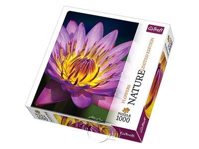 【自然攝影系列拼圖-1000片】睡蓮Water Lily