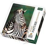 【自然攝影系列拼圖-1000片】斑馬Zebra