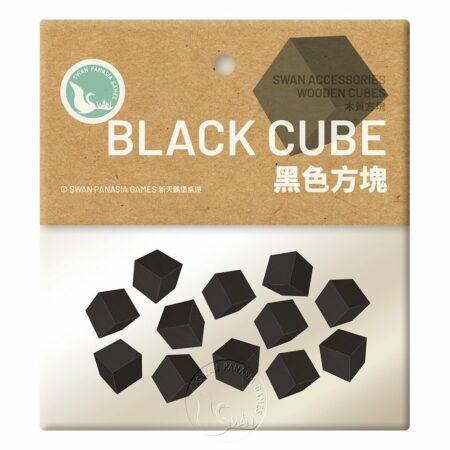 黑色方塊-10mm-12入